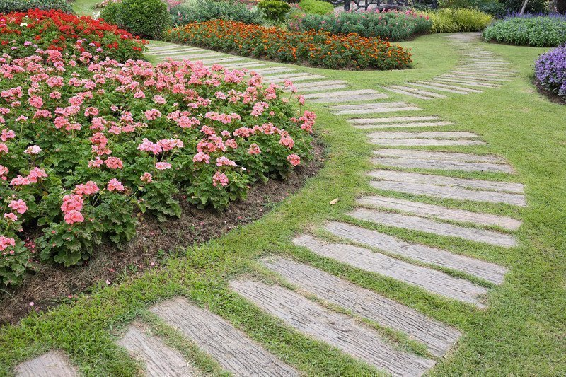 Great Gardening Hints and Tips