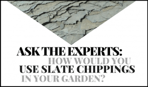 Ask the Gardening Experts