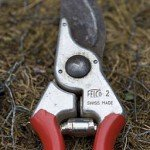 useful gardening blog