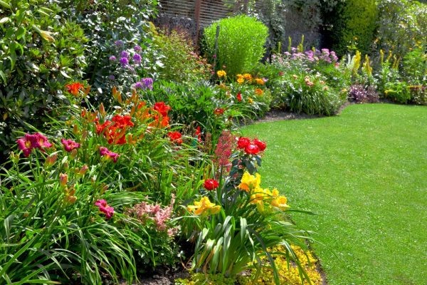 Bespoke Local Garden Maintenance