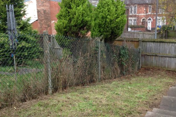 Garden Clearances - Including Trees & Shrubs