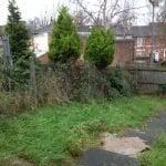 Garden Clearances - Including Trees & Shrubs